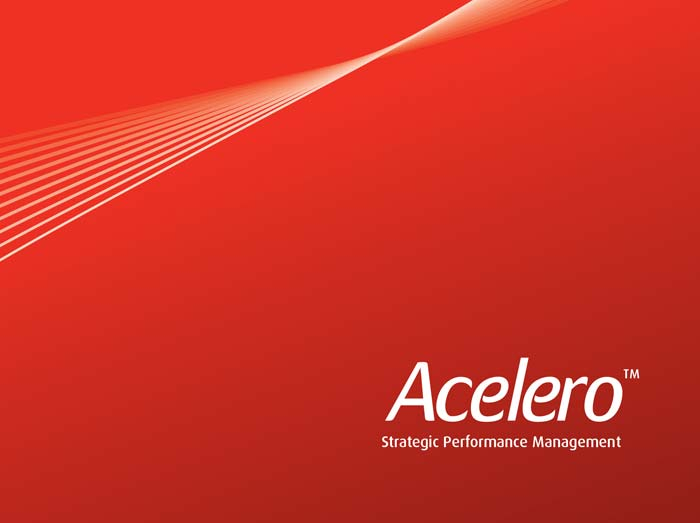 Acelero Consulting Group