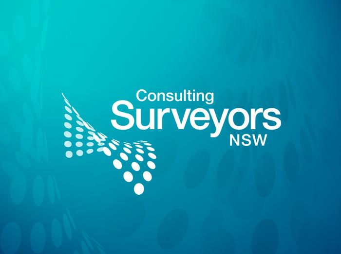 Consulting Surveyors